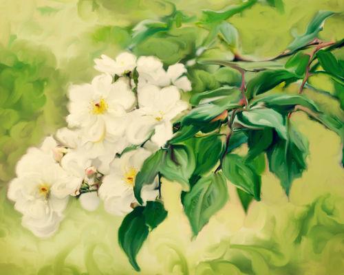 Painterlyrosebush