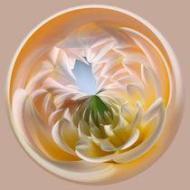 Pastel Dahlia Orb by Kaye Menner