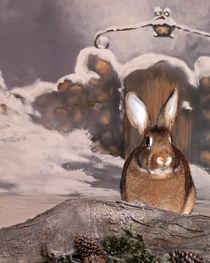 Bunny In The Snow von Diane Bell