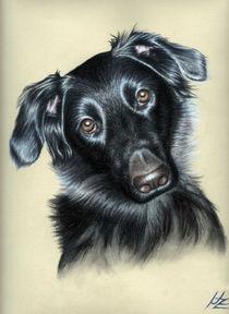 Dogs Eyes von Nicole Zeug
