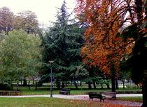 Idyllic Autumn von bebra
