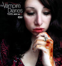 The Vampire Diaries by Sina Rose