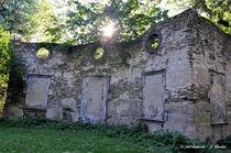 historisches Gebäude im Schlosspark Sayn von shark24