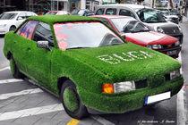 Gras-Audi, ausgefallenes Auto von shark24