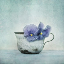 spring blues with a hint of yellow by Priska  Wettstein