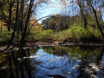 lake in autumn von Wolfgang Schweizer