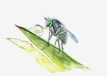 'Die Zärtlichkeit des Mückenbeins' von scarlettscharlachrot
