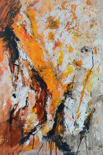 Feuer und Leidenschaft von Ismeta  Gruenwald