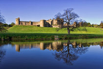 Alnwick Castle by David Pringle