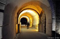 Festung Ehrenbreitstein, Kultur, Bauwerk von shark24