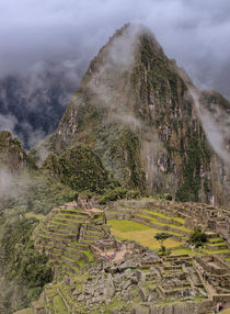 Machu Picchu IV by Steffen Klemz