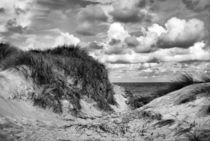 Nordsee Dünen von kiwar