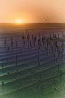 Atlantic-sunrise