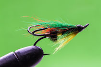 Salmon fishing fly by Craig Lapsley