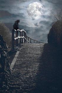 Moonlight by Raffaella Lunelli