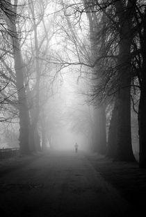 The Mist by Art Photos