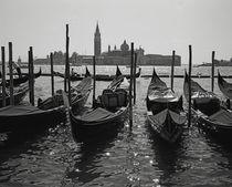 Venedig von Alexander Borais