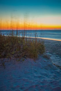 Destin Florida Beach von digidreamgrafix