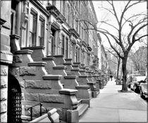 VICTORIAN NY. by Maks Erlikh