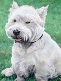 White Westhighland Terrier by Nicole Zeug