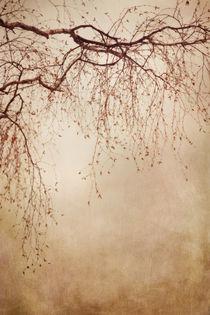 'listen closely' by Priska  Wettstein