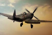 Lone Spitfire von James Biggadike