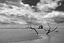 Playa Naranjo von Andreas Birkholz