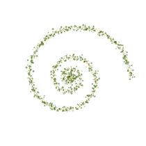 Spiral von Jakob Brynitz