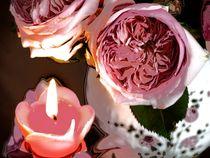 Rosenlicht ~5~ von Christine  Hofmann