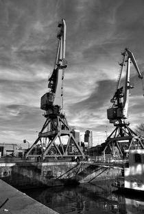 gruas en puerto Madero by mariana clotta