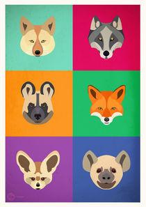 Caninos-originales