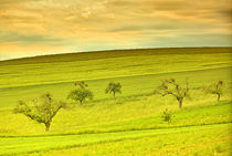Wunderschöne Landschaft im Frühling  von Gina Koch