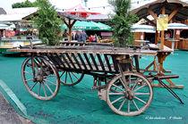 Leiterwagen, historisches Transportmittel von shark24