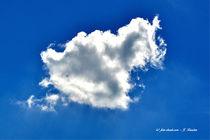 Wolken, Himmel, weiße Wolke von shark24