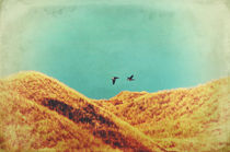 Freedom Vintage by AD DESIGN Photo + PhotoArt