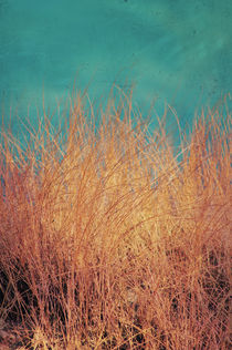Northsea Feeling by AD DESIGN Photo + PhotoArt