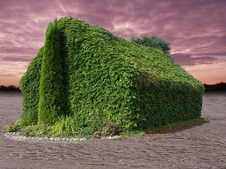 Greenhouseffect