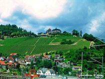 Grüne Landschaft in Bayern, Landscape von shark24