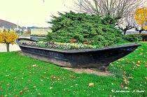 Blumenboot von shark24