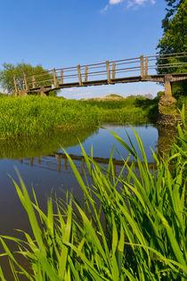 The Bridge by David Pyatt