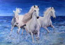 Pferdefreuden von Elisabeth Maier