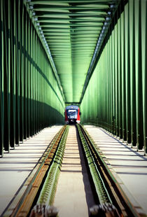 Train on the bridge by marunga