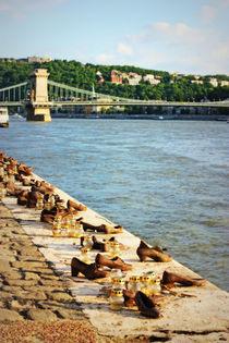 Shoes on the Danube von Dan Davidson