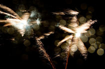 Fuerwerk - Palmen von chriscolinpix