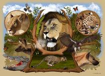 Africa 2 von Fernando Ferreiro