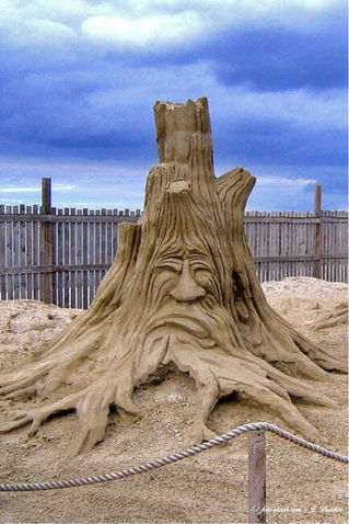 Sandworld2