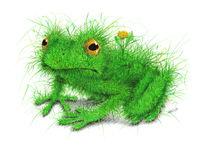 Grasfrosch - Grass Frog by Stefan Kahlhammer