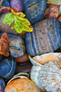 Colourful Stones by David Pringle