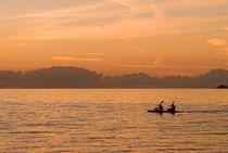 Kayaking at Dawn, Nassau, Bahamas by Shane Pinder