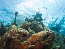 Aramaroa Wreck, Egg Island, Eleuthera, Bahamas by Shane Pinder